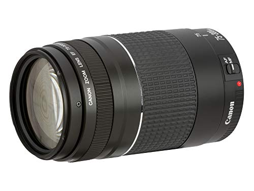 Canon 6473A015 - Teleobjetivo para cámara EOS Lens/EF 75-300 mm 1:4-5.6 III