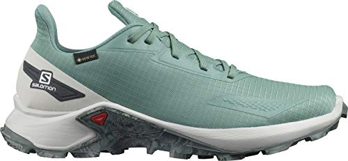 Salomon Męskie buty Alphacross Blast GTX, wodoszczelne buty do biegania w terenie, Jasnozielony trellis Lunar Rock Ebony - 42 EU