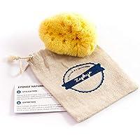 Esponja para bebés Zephyr®, esponja de mar natural para el aseo del bebé (5-8 cm) - Esponja de baño vegetal y lavable para bebés