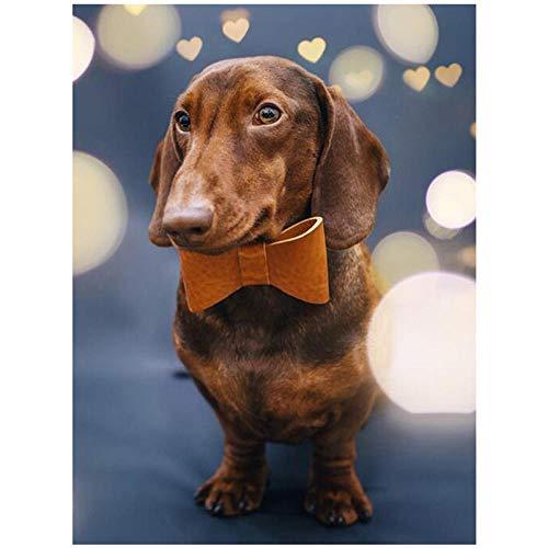 Volledige ronde boor DIY diamant schilderij Duitsland teckel schattig huisdier hond 5D diamant borduurwerk kruis steek kerst 30x40cm /12x16in