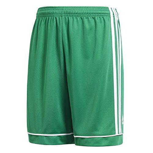 adidas Squadra 17 S, Pantaloncini da Calcio Bambino, Verde (Bold Green/White), 11-12 Y
