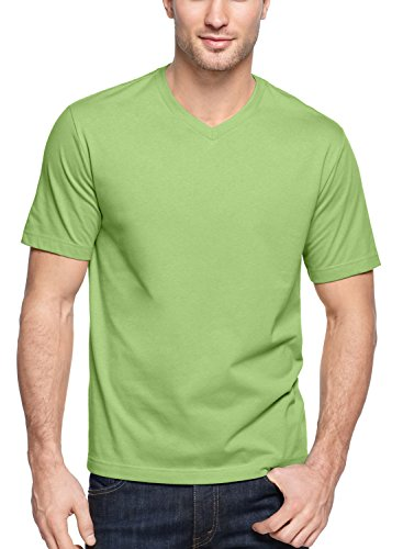 John Ashford Short-Sleeve V-Neck Mens Small Basic Tee Shirt Green S