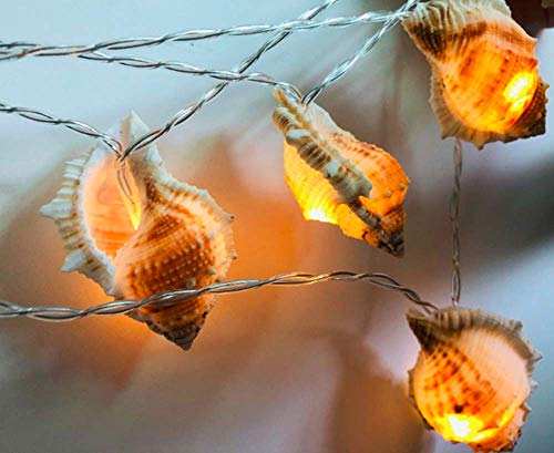 Conch String Lights, 3M 20LED Sea Shell Fairy Lamp Lovely Conch String Light Battery Operated for Holiday Wedding Home Window Decoration
