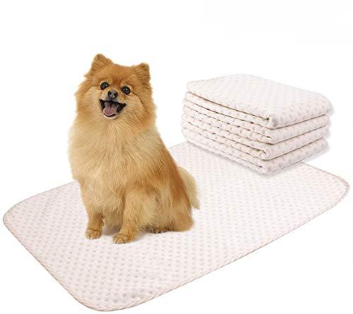 Yangbaga Empapadores Perros, Empapadores de Entrenamiento para Perros Gatos, Pañales de Perro Lavable y Reutilizables Empapadores de Entrenamiento para Adecuado para Perros (50 * 70cm)