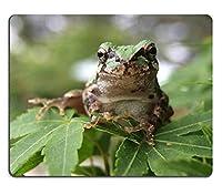 マウスパッド、ゲーミングマウスパッドJapaneseTreeFrog TreeFrog Frog X Macro Olloclip Natural Rubber Material PN00X9546