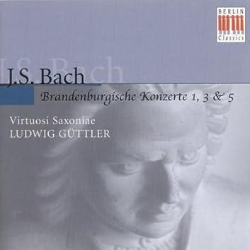 BACH, J.S.: Brandenburg Concertos Nos. 1, 3, 5 (Virtuosi Saxoniae, Guttler)