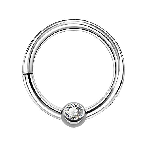 OUFER 16G Surgical Steel Ear Daith Earrings Clear CZ Center Hinged Segment Ring Hoop Rook Piercing Septum Jewelry Sparkles Seamless Clicker Hoop Ring