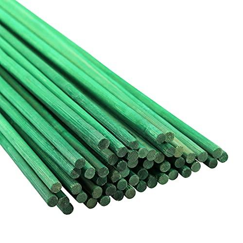 KINGLAKE 50 varillas de soporte de plantas verdes de 60 cm para jardín de flores