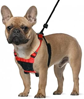 Mesh Anti Pull Harness Size: Small Neck (9 – 12 in.), Color: Black