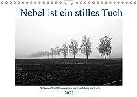 Nebel ist ein stilles Tuch - um Landsberg am Lech (Wandkalender 2022 DIN A4 quer): Schwarz-Weiss-Fotografien von Martina Marten (Monatskalender, 14 Seiten )