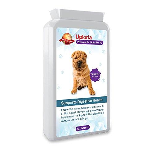 Uploria Pet World Suplemento Probiótico para Estómagos Sensibles De Perros | 120 Comprimidos con Sabor A Pollo | Es También Un Suplemento para El Sistema Inmunológico