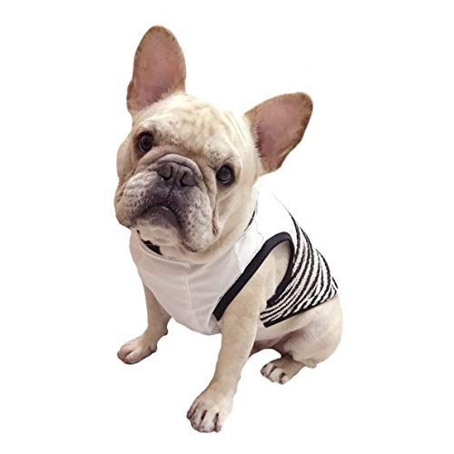 Frenchie Pet Apparel Black White Stripped Cooling Tank T-Shirt for French Bulldog or Pug Wear