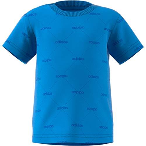 adidas I Lin Graph tee Camiseta, Unisex bebé, azurea/Azul, 74