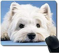 かわいい犬の子犬が地面にゆったりと横たわるマウスパッド9.5インチx 7.9インチ(240mm x 200mm x 3mm)