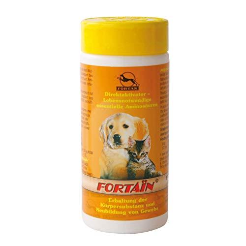 Fortan Fortain, 1er Pack (1 x 80 g)