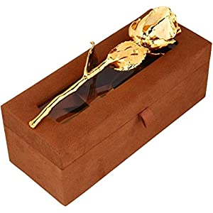 billion deals 24k gold dipped natural rose with brown beautiful gift box men & women best gift on valentine day, anniversary,birthday and thanksgiving gift silk flower arrangements