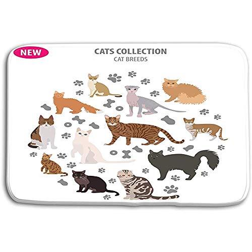 SESILY deurmatten tapijt kat rassen icoon set platte stijl geïsoleerd wit maken eigen inf infografische huisdieren bad matten