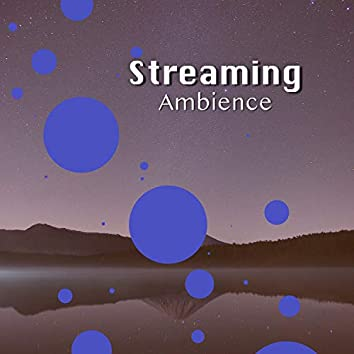 # 1 Album: Streaming Ambience