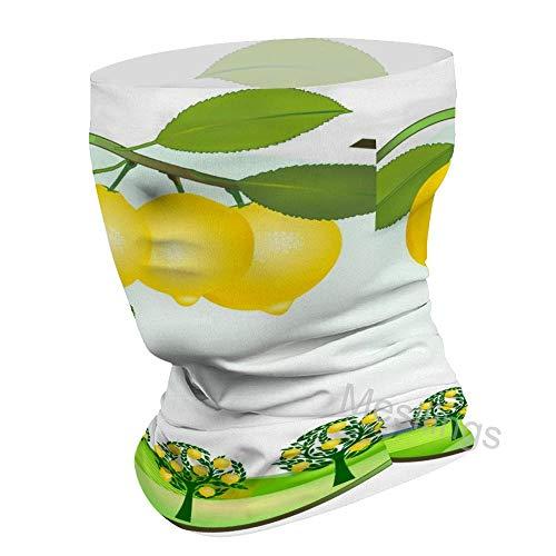 Pañuelo para la cara impreso, diseño de limón, huerto de árbol, bandanas para el cuello, polainas unisex para el polvo, al aire libre y deportes