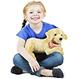 VIAHART Lorrie The Labrador | 12 Inch Stuffed Animal Plush | by Tiger Tale Toys