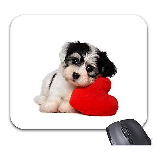 Netter Hund mit rotem Liebeskissen Mauspads Rutschfeste Gummibasis Stilvolles Bürozubehör