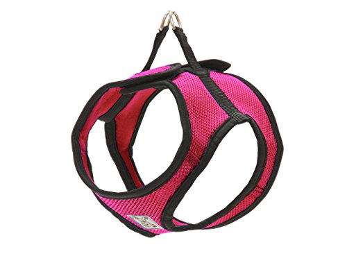 RC Pet Products Step in Cirque Soft Walking Dog Harness, Large, Raspberry