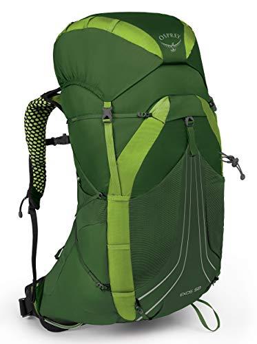 Osprey Exos 58 leichter Trekkingrucksack für Männer - Tunnel Green (SM)