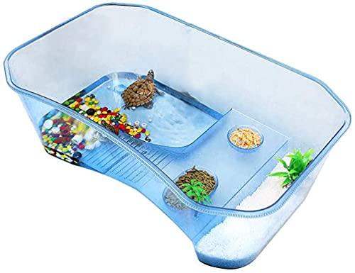 Tortuguera Grande - Acuario para Tortugas con Palmera y Piedras de Colores, Resistente y Ligera – Terrario de Tortugas de 60 y 40 cm (40 CM)