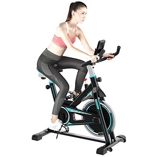 2WD Exercise Bike, Spin Bike, Exercise Bike for Home, Adjustable Handlebar and Seat for People of Different...