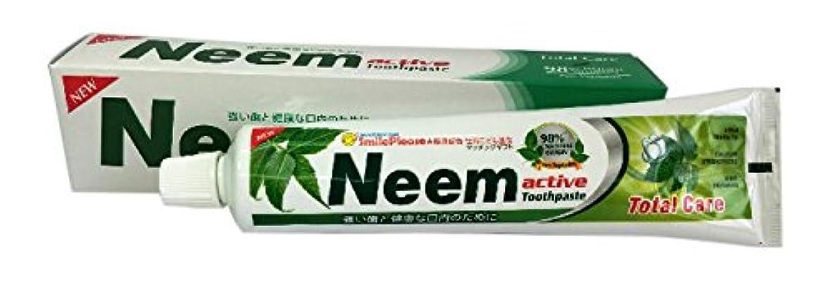 半径アンプ味方ニームアクティブ歯磨き粉 200g