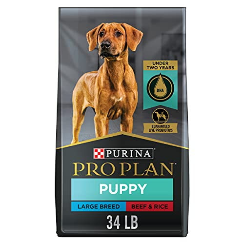 Purina Pro Plan High Protein Large Breed Puppy Food with Probiotics, Beef & Rice Formula - 34 lb. Bag
