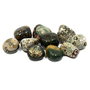 CrystalAge Ocean Jasper Tumble Stone (20-25mm) - Pack of 5