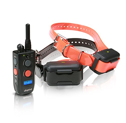 Dogtra 1902NCP FieldStar Remote Training Collar 2-Dog System