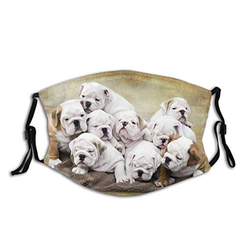 English Bulldog Pups Dog Face Mask for Adults,Washable Face Bandanas Balaclava Reusable Fabric Protection with 2Filters for Men Women