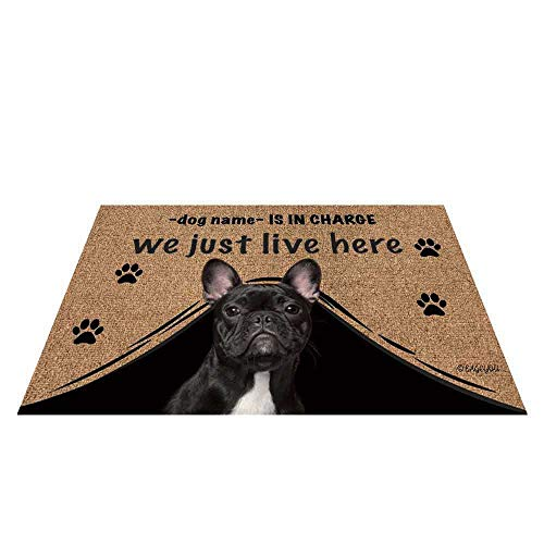 BAGEYOU Personalized Dog's Name Outdoor Doormat with My Love Dog French Bulldog Welcome Floor Mat Who is in Charge We Just Live Here 23.6' X 15.7'