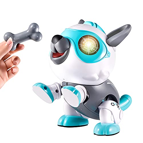 Kearui Robot Dog Toys for Kids, DIY Stem Toys for 6-12 Year Old Boys Girls, Interactive Educational Robot Toys, Stem Projects for Kids Ages 8-12, Birthday Party Gifts for Kids