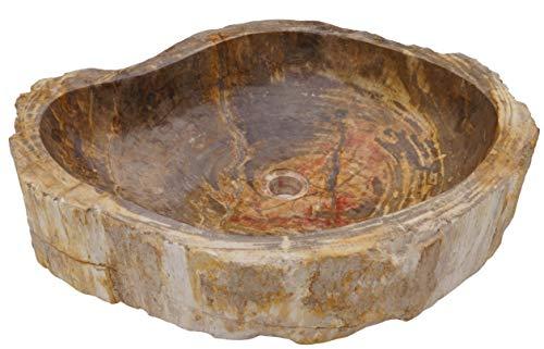 Guru-Shop Lavabo con Encimera de Madera Maciza Fósil, Lavabo, Lavamanos de Piedra Natural - Modelo 16, De Color Beige, 15x65x50 cm, Lavabos, Lavamanos Bañeras