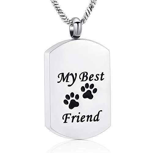 Yinplsmemory My Best Friend Dog/Cat Paw Carved Cremation Ashes Necklace Urn Pendant Pet Keepsake (Silver)