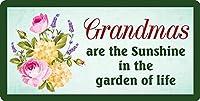 おばあちゃんは生命の庭の太陽の光です12X8インチの壁の装飾メタルサインハンギングノベルティサイン