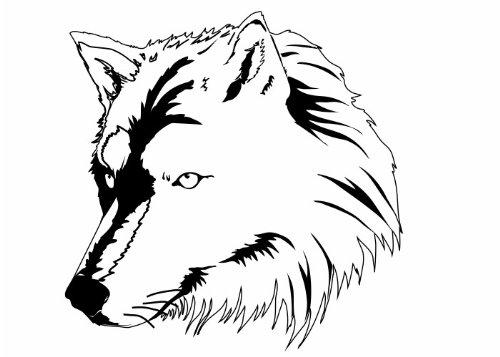 Wandtattooladen Wandtattoo - Wolfskopf Größe:110x110cm Farbe: Schablone