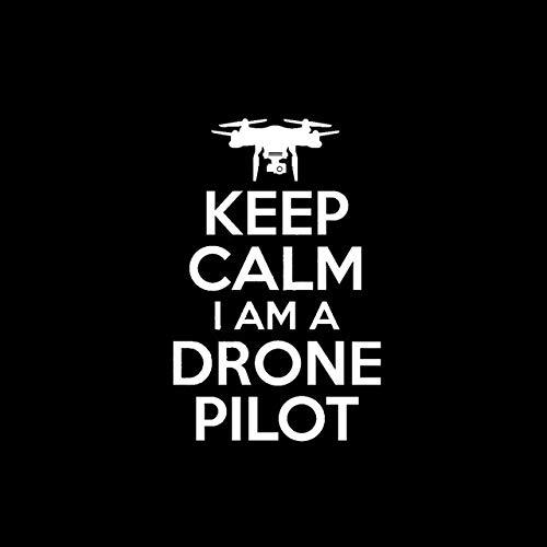 Wiedergeburt Aufkleber Auto 10.4cm * 16cm Keep Calm I AM A DROHNE Pilot UAV Personality-Auto-Aufkleber Vinyl Aufkleber Schwarz/Silber (Color Name : Silver)
