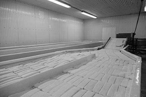 18 x 24 Black & White Canvas Wrap of Workers at The Old Country Cheese Plant in Cashton Wisconsin Make Large Bricks of mild semi-Soft muenster Cheese from Milk Supplied by Nearby A y75 2016 Highsmith