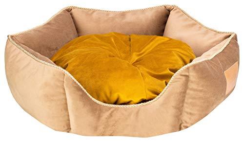 MOOI Hundebett Hundesofa Waschbar Hundekörbchen Exklusiv Katzenbett Haustierbett Hundekissen für kleine mittlere große Hunde I Crown I Gold I M