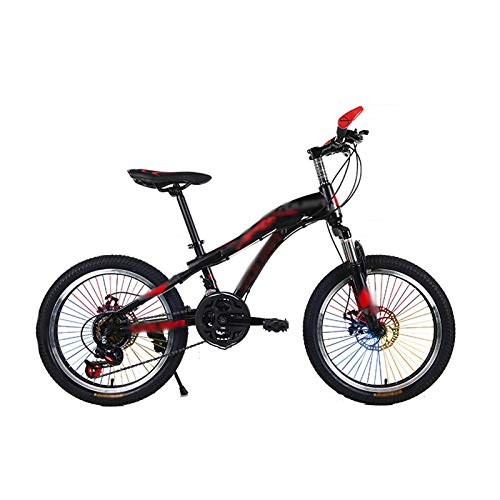 LSJTY Kids' Mountain Bikes, 20 Inches Children's Variable Speed Bicycle, Small Student Casual Bicycles, Suitable for Boys and Girls