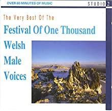 The Very Best Of The Festival Of One Thousand Welsh Male Voices
