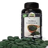 Cibocrudo Chlorella In Compresse Cruda Bio, Ottenute Da Alga Verde Clorella Pyrenoidosa, Benefici Legati A Vitamina E, Clorofilla, Zinco, Antiossidanti, 300 Capsule, color Scuro, 120 g