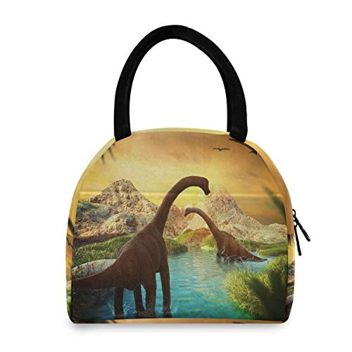 Vinlin Lunch Cooler Bag Ancient Jurassic Animal Dinosaur Insulated Lunch Tote Bag Reusable Portable Lunch Container for Kids Woman Man Picnic Work School