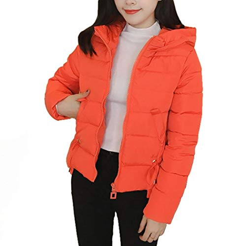Crystallly gewatteerde damesmantel winter vrije tijd capuchon mantel dikke schattige elegante warme comfortabele maten meisjes mode overgang met rits longsleeve gewatteerde jas outdoorjas