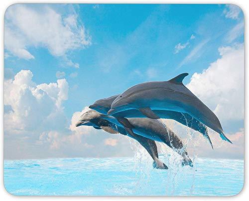 Mauspad, 7,1 x 22,9 cm, Motiv: Bahamas, Strand, Meer, Wasser, Angeln, Geschenk für Computer PC, Pad-32, 8 x 10 In(20 x 25cm)