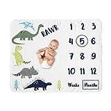 Sweet Jojo Designs Mod Dino Boy Milestone Blanket Monthly Newborn First Year Growth Mat Baby Shower Memory Keepsake Gift Picture - Blue, Green and Grey Modern Dinosaur Rawr